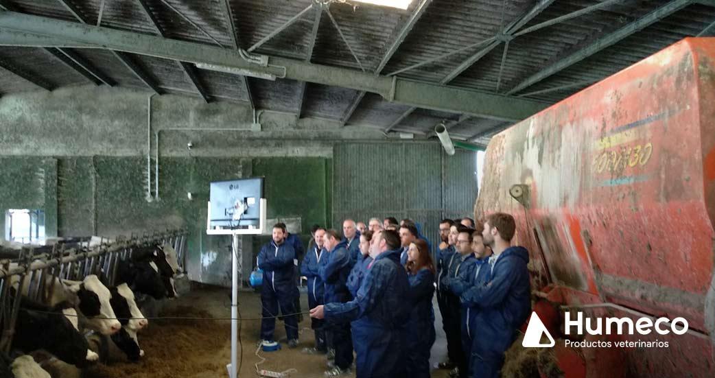 curso veterinario en asturias