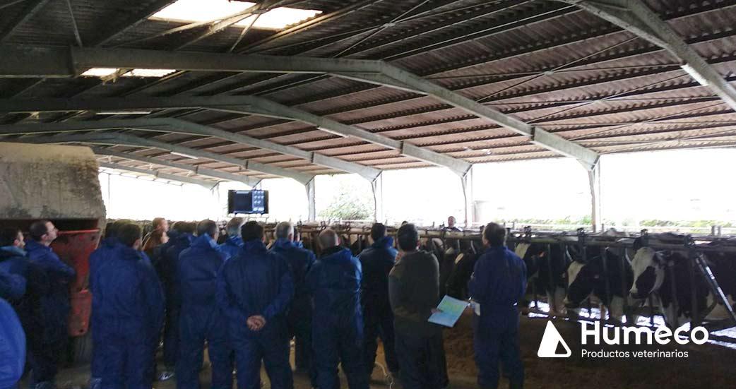 curso para veterinarios organizado por humeco en asturias