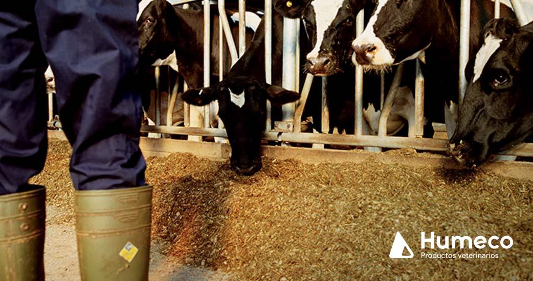 control monitorizado de temperatura y fiebres en ganado
