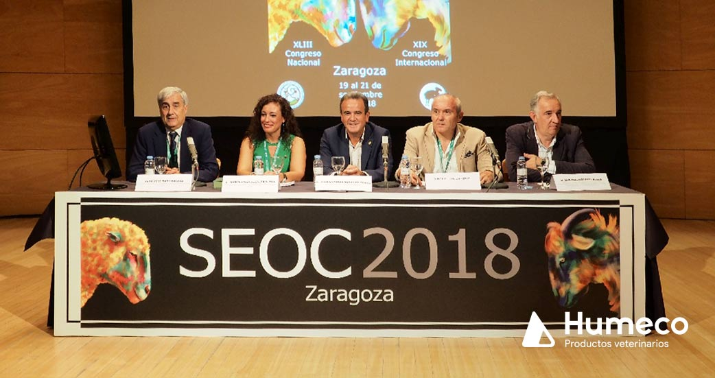 Congreso seoc 2018 zaragoza